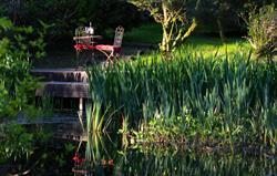 Mirefoot garden pond deck