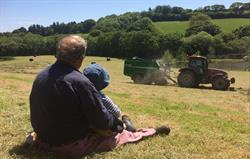 Making hay while the sun shines