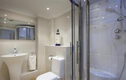 Family steam shower