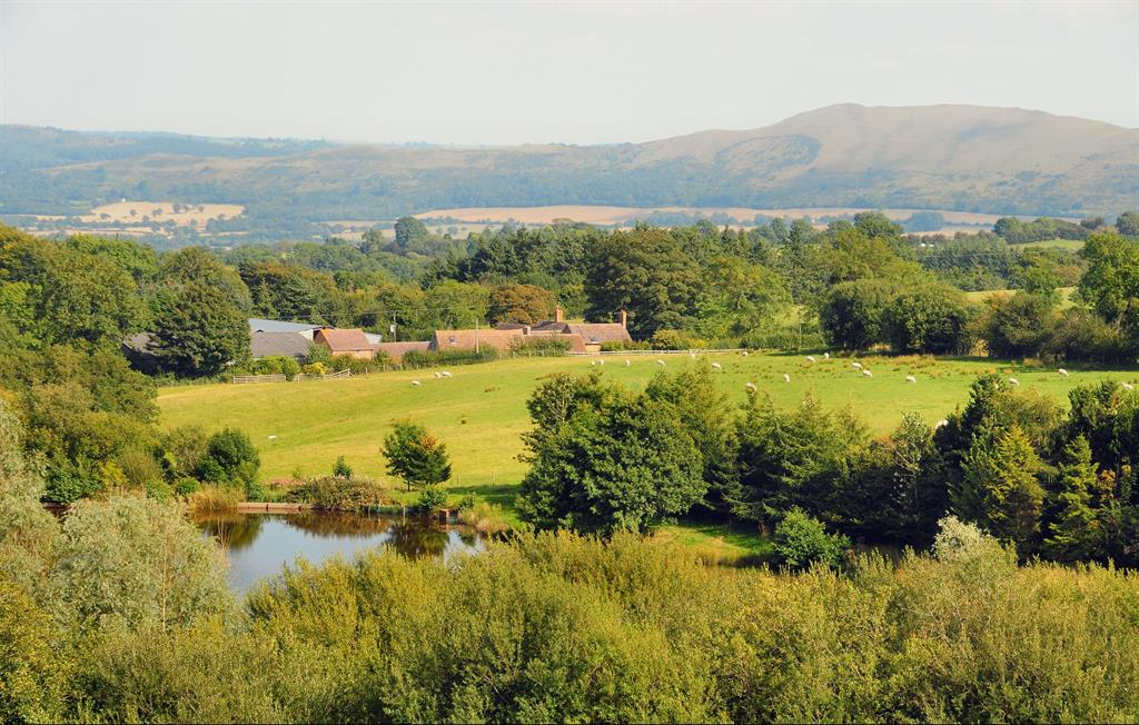 Middle Farm and lake