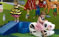Play Barn with soft play