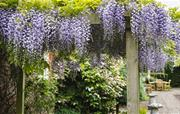 Enjoy the manicured gardens and parkland
