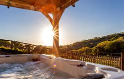 Tree Barn Hot Tub