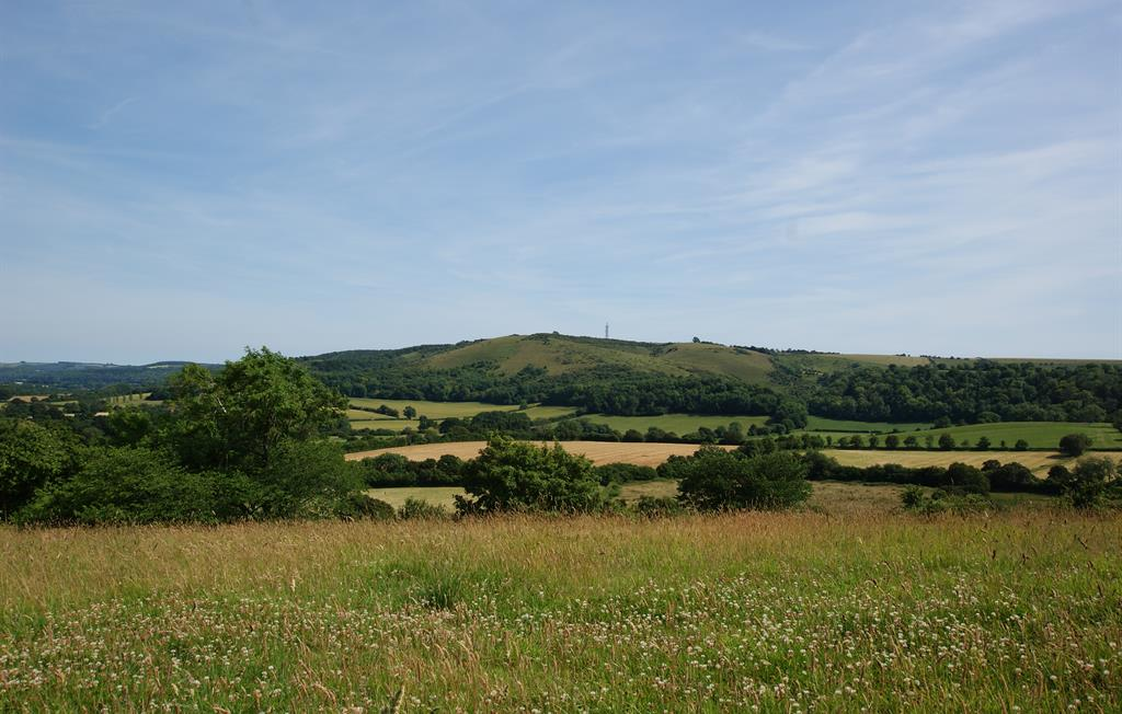Views across the South Downs from Barrow Hill