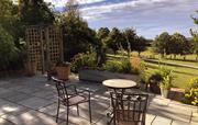 Lemon Cottage Garden
