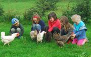 Feeding the chickens is always fun
