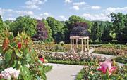 Rose garden at Hopton Hall