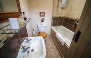 Mouse Bathroom