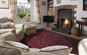 Living room with cosy fire