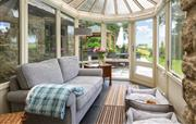 Conservatory and cosy dog beds