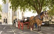 Horse carriage York