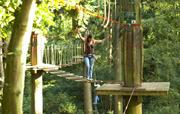 Dalby Forest, 'Go Ape'