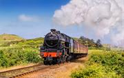 Ride a steam train on the Poppy Line