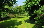 Beautiful, large enclosed garden