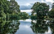 Medieval stew ponds