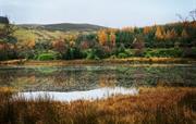 Nearby Lochan