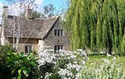 Culls Cottage rear garden