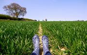 Enjoy farm walks