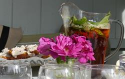 Enjoy a Pimms in the summerhouse