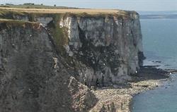 The cliff tops Bempton