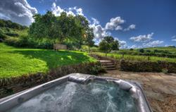 Cow Barn hot tub