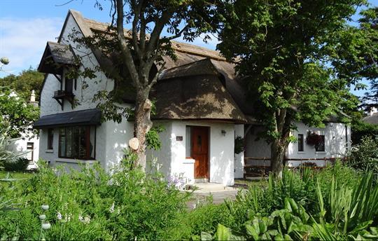 Garden Cottage - Garden views.