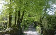 Lane at Fenteroon