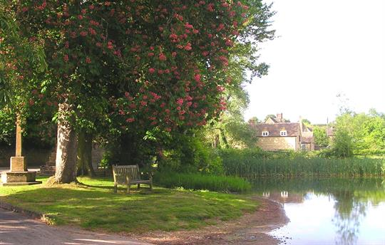 The Chestnuts from The Shilton Ford