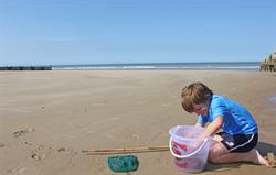 crabbing on Overstrand beach