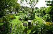 Beautiful organic cottage gardens