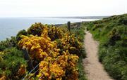 Inviting coastal and hill walking.