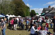 Food Festivals and Farmer's Markets