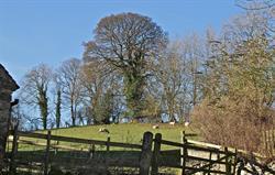 Village view in Parwich