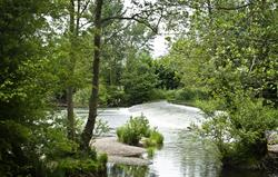 Ludlow, Dinham Weir