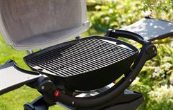 Thatched Weber gas barbecue