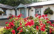 Sandpiper Cottage, Broomhill Manor