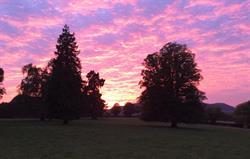Sunset across the park