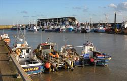 Bridlington harbour fishing fleet