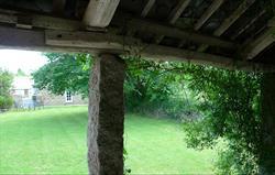 Meadow linney