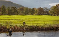 Fly Fishing in the River Dee