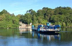 The iconic King Harry Ferry