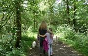 Abundance of walks