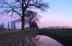 Sunset at Manor Farm