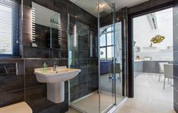 Large walk-in drench shower