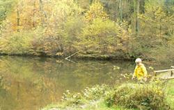 Exploring Soudley ponds