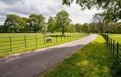 Churchdale Driveway