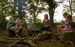 Sausage sizzle in our 40 acre wood