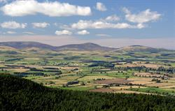 Simonside Hills, near Beacon Hill