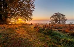 Sunrise from Beacon Hill Cottage