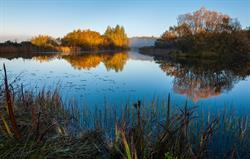 Meg's lake at dawn